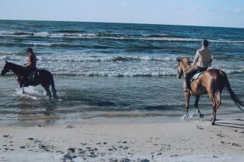 Łeba Atrakcja Jazda konna Ośrodek Jeździecki Senny